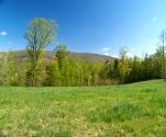 Virginia Farm for sale