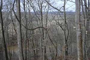 Fluvanna County Va Land for Sale