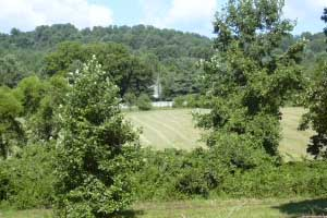 Albemarle County Building Lot for Sale