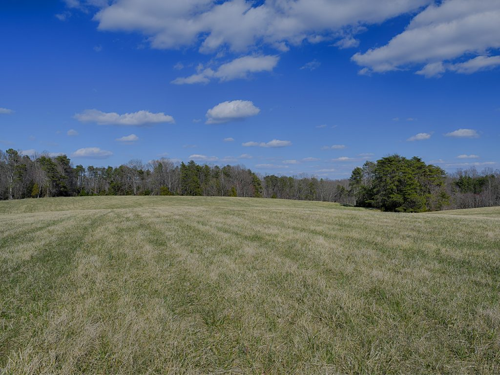 Louisa County VA Land for Sale