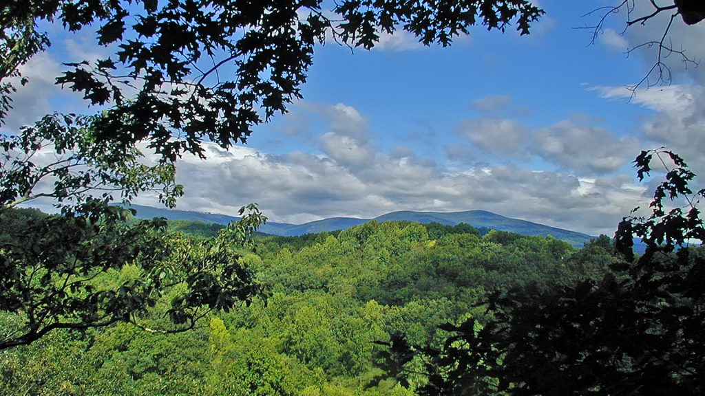 Land for Sale in Nelson County VA