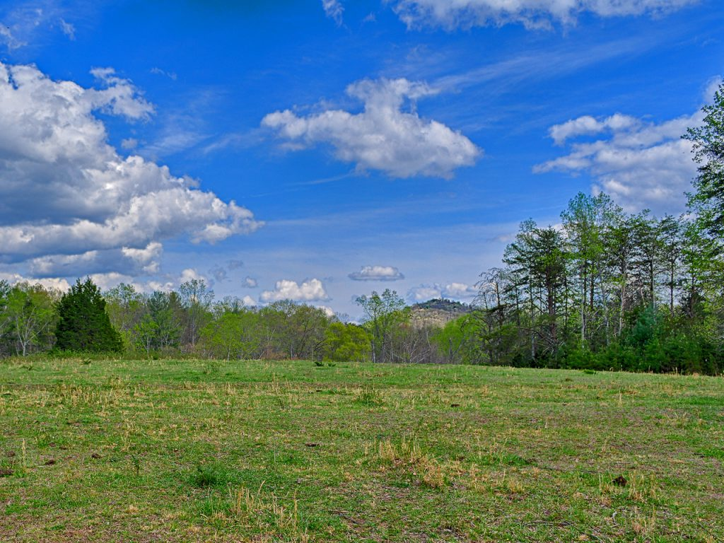 Albemarle County VA Land for Sale