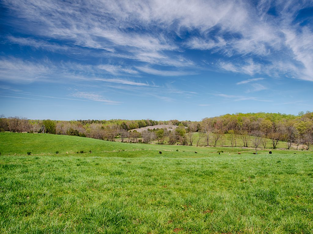Madison County VA Land for Sale
